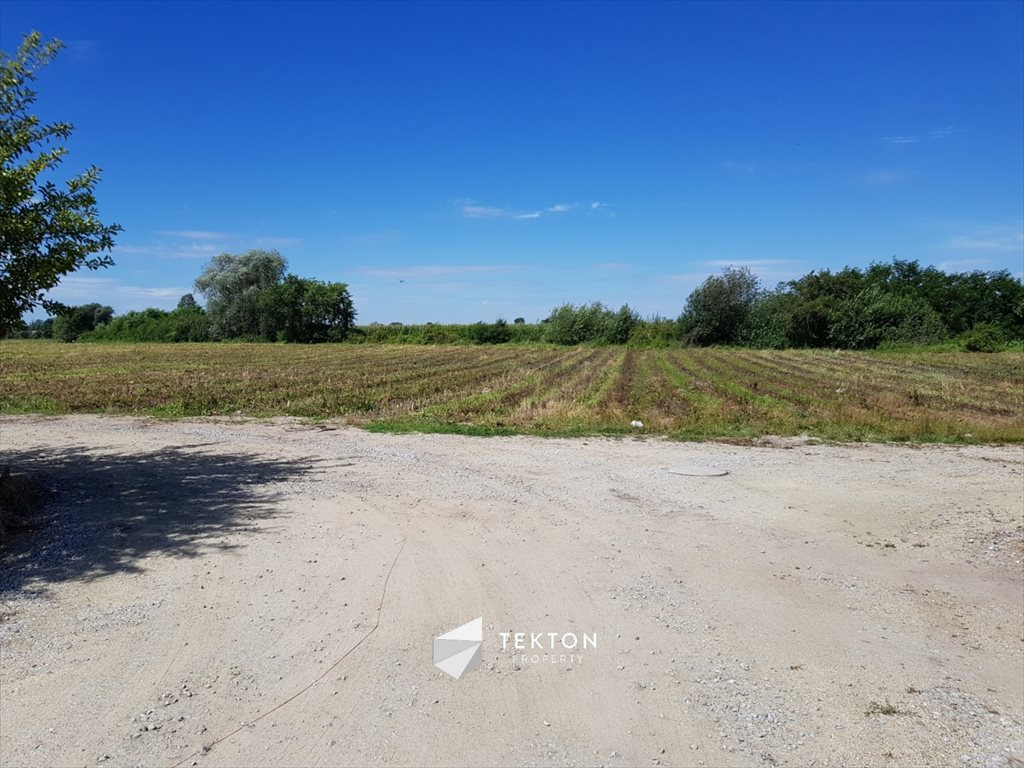 Działka rolna na sprzedaż Mokronos Dolny, Morelowa  3000m2 Foto 5