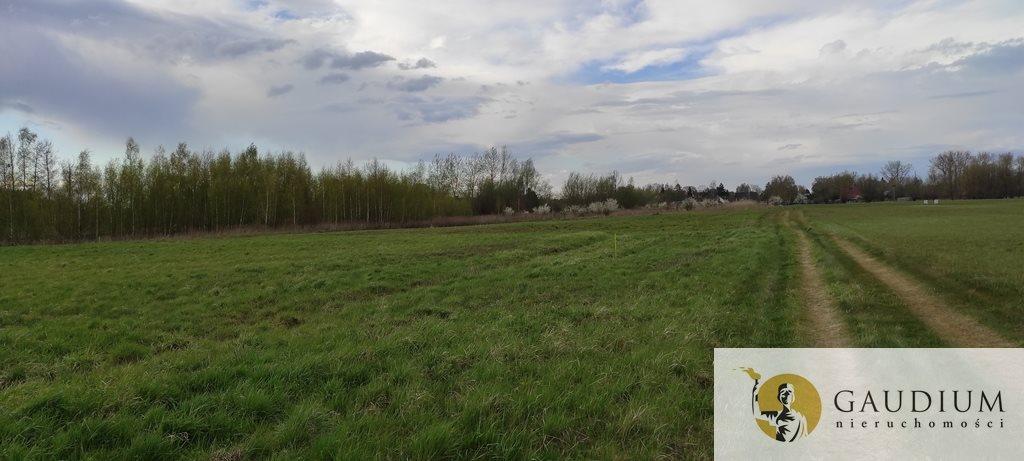 Działka budowlana na sprzedaż Drewnica  1300m2 Foto 1