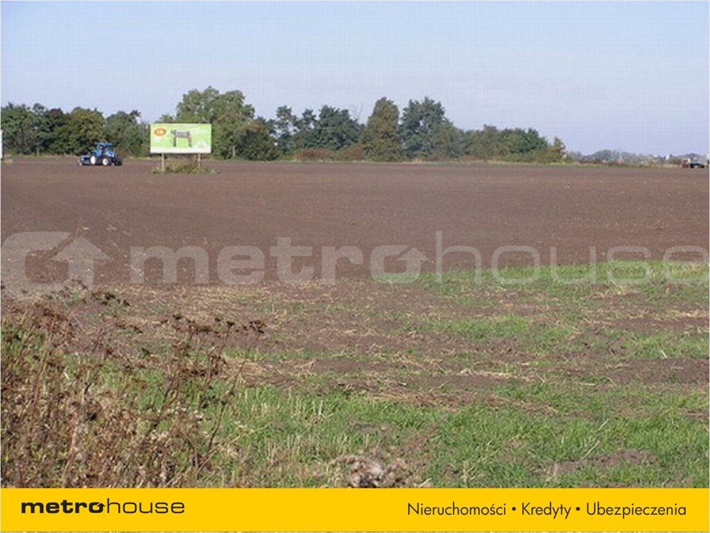 Działka rolna na sprzedaż Karwiany, Żórawina  34568m2 Foto 5