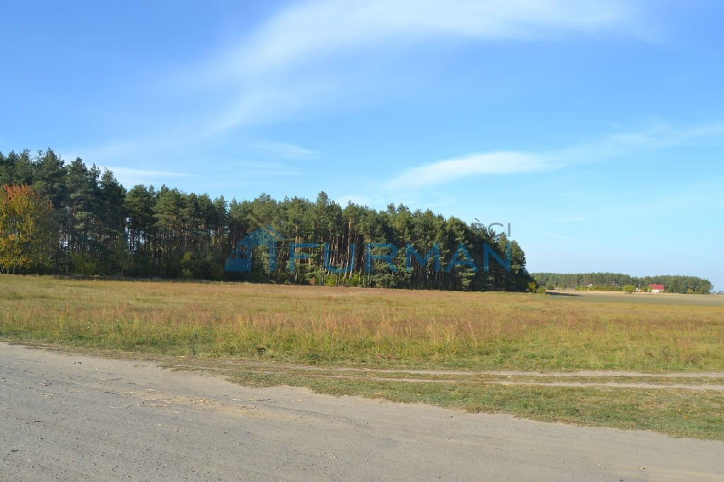 Działka rolna na sprzedaż Gościejewo  45100m2 Foto 4