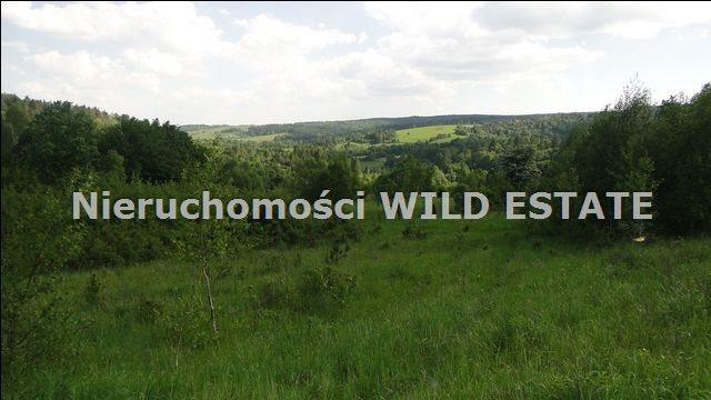 Działka rolna na sprzedaż Ustrzyki Dolne, Jureczkowa  22700m2 Foto 4