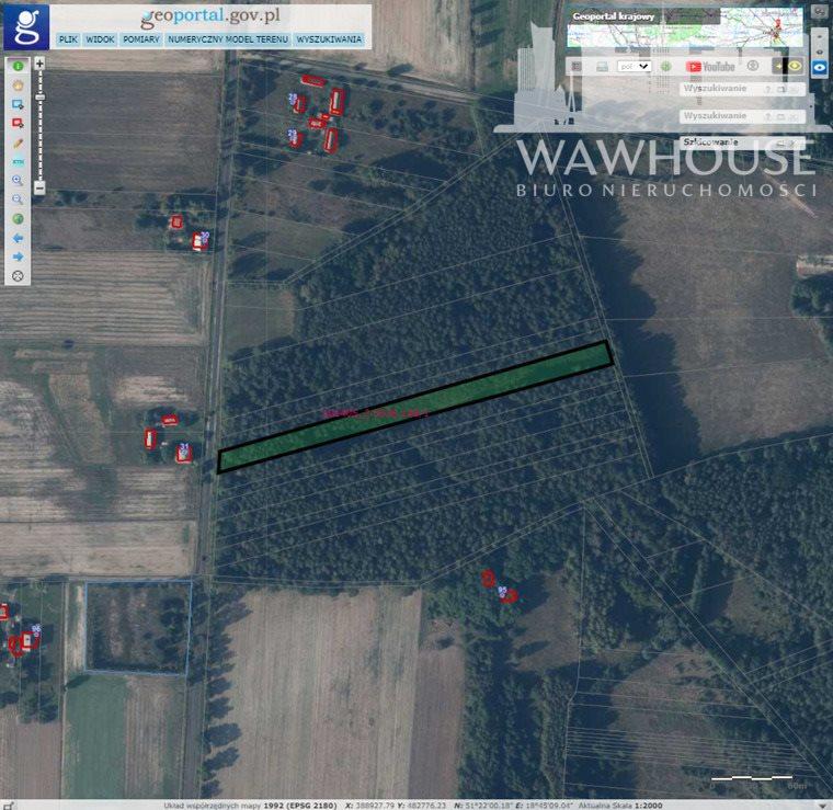 Działka leśna na sprzedaż Wolnica Niechmirowska  5000m2 Foto 1