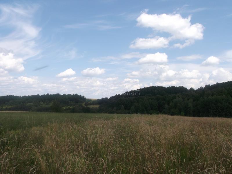 Działka rolna pod dzierżawę Płóczki Górne  800000m2 Foto 2
