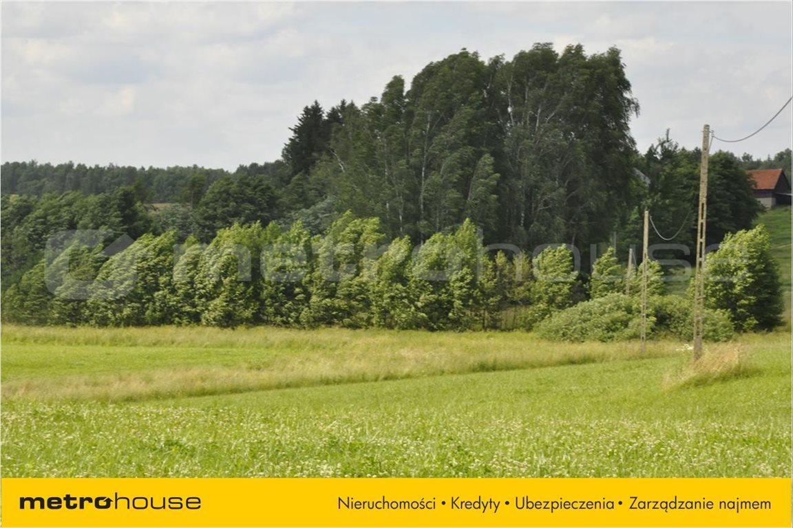 Działka rolna na sprzedaż Blanki, Lidzbark Warmiński  11610m2 Foto 3