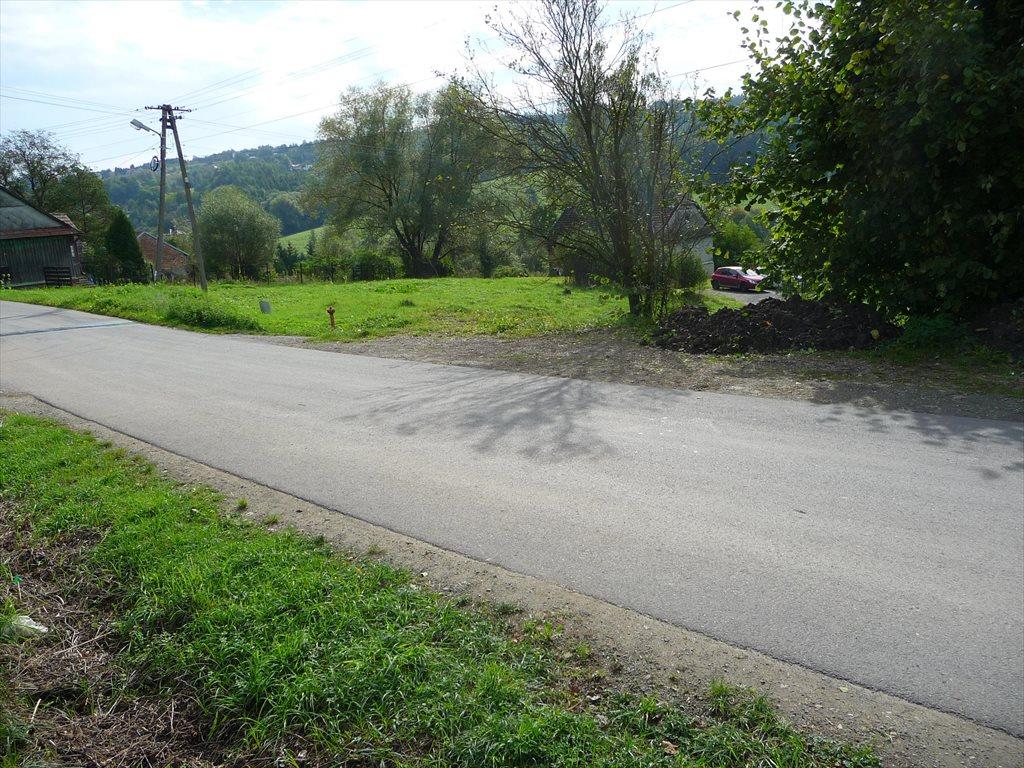 Działka budowlana na sprzedaż Golkowice  2000m2 Foto 5