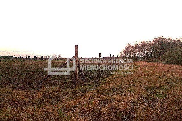 Działka leśna na sprzedaż Strzeczona  129577m2 Foto 3