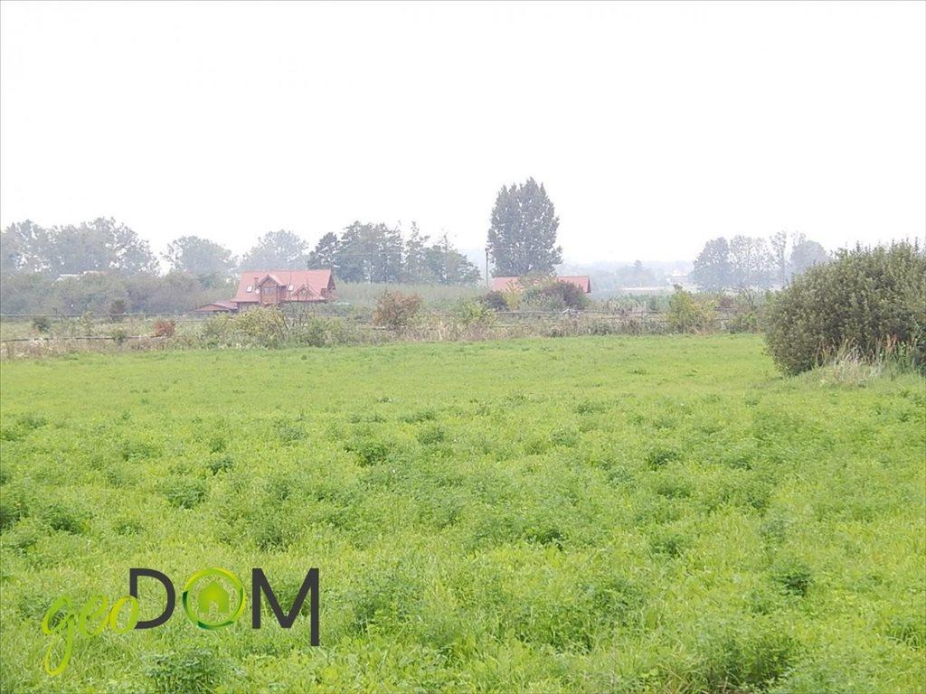 Działka rolna na sprzedaż Horodyszcze-Kolonia  11293m2 Foto 4