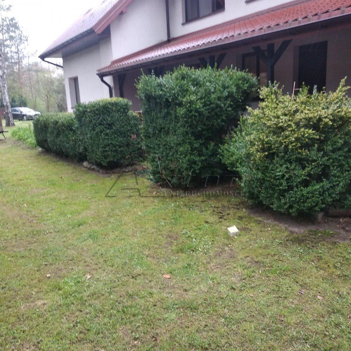 Działka budowlana na sprzedaż Barchów  4200m2 Foto 2
