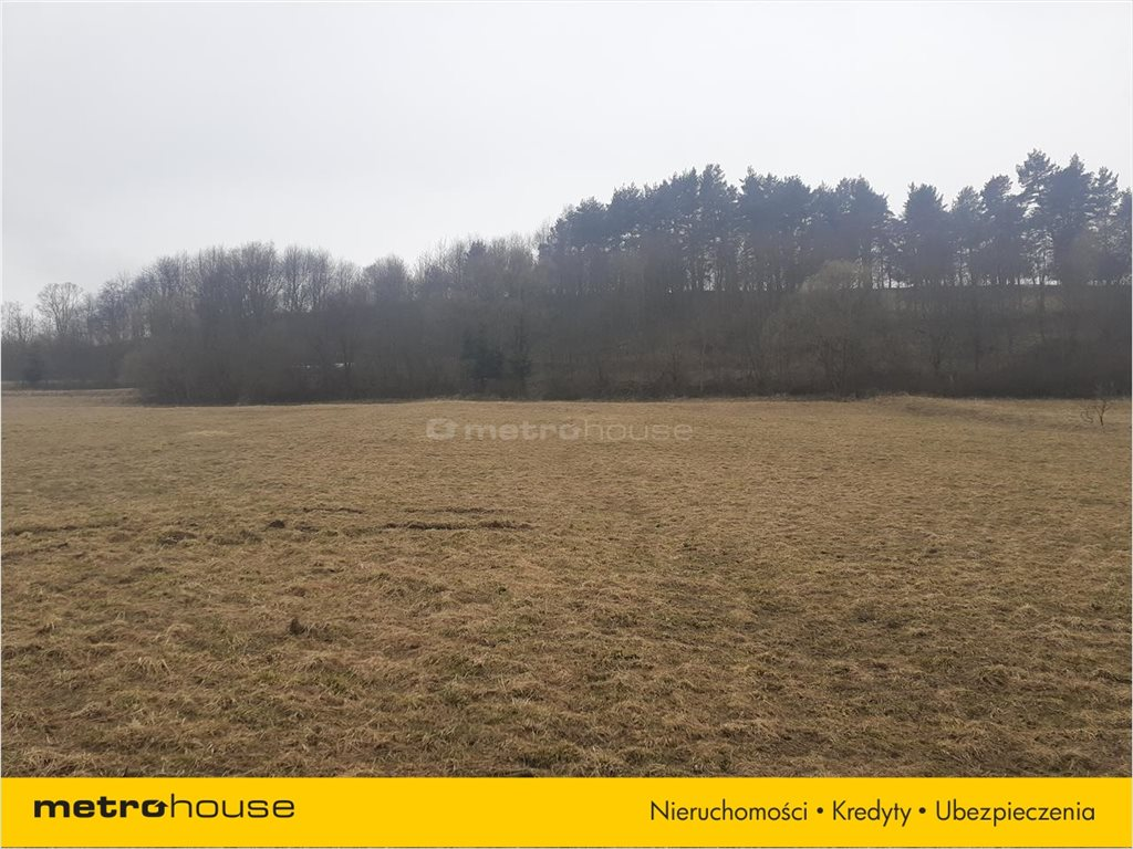 Działka rolna na sprzedaż Rzepedź, Komańcza  9300m2 Foto 7