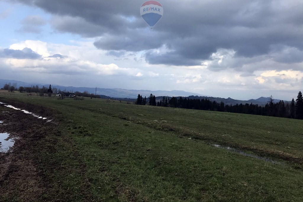 Działka rolna na sprzedaż Białka Tatrzańska  4667m2 Foto 3