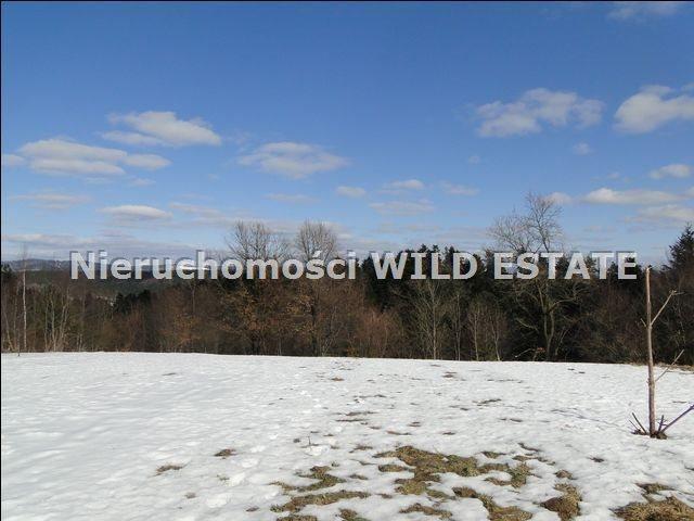 Działka rolna na sprzedaż Lesko, Lesko  4225m2 Foto 5