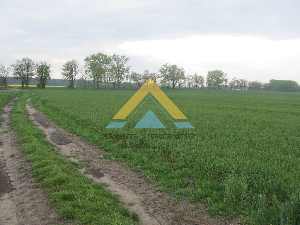 Działka siedliskowa na sprzedaż Choszczno  3090m2 Foto 2