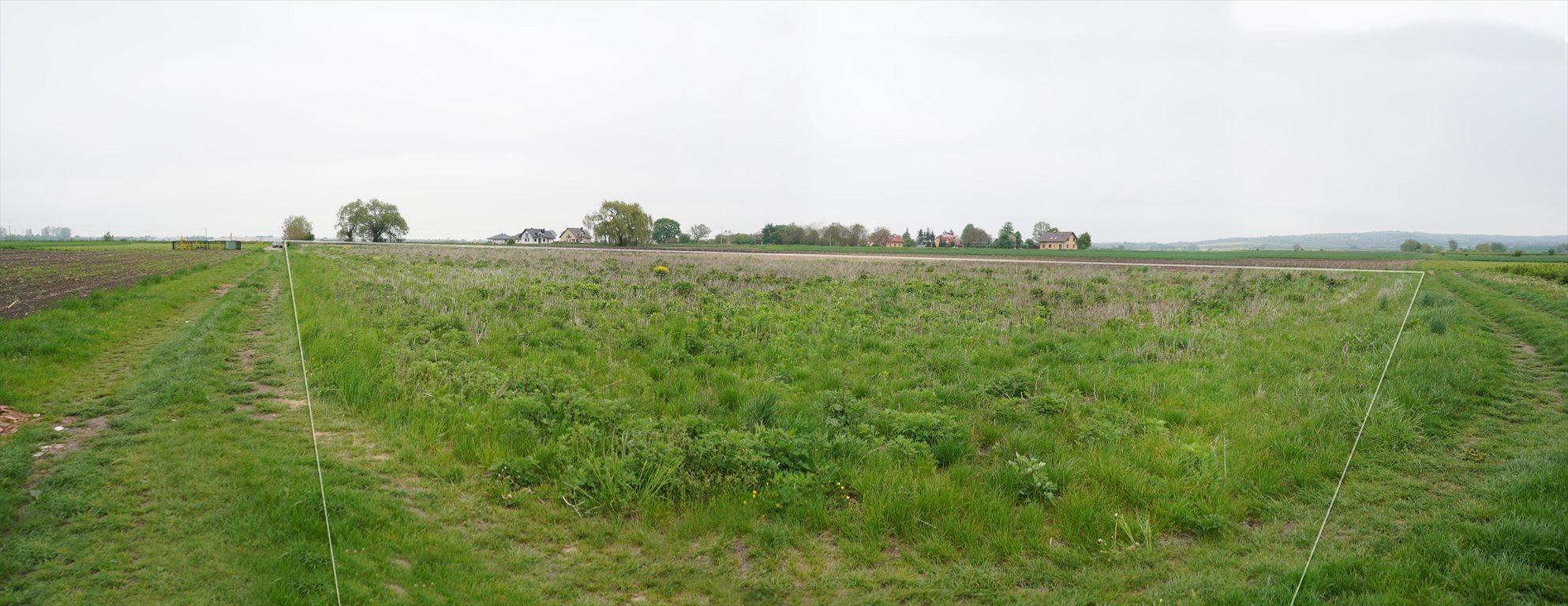 Działka rolna na sprzedaż Przemyśl, Krówniki  5500m2 Foto 4