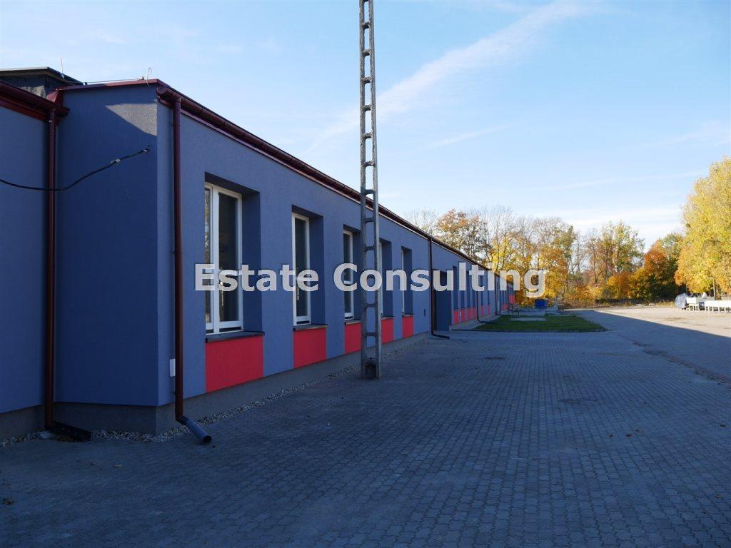 Lokal użytkowy na sprzedaż Czarna Białostocka, Czarna Białostocka  4365m2 Foto 2