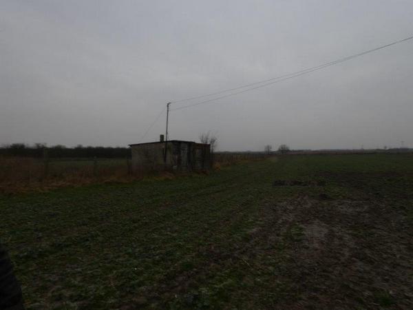 Działka rolna na sprzedaż Sicienko  20000m2 Foto 7