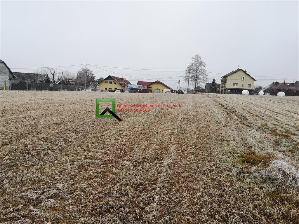 Działka budowlana na sprzedaż Stojowice  1600m2 Foto 6