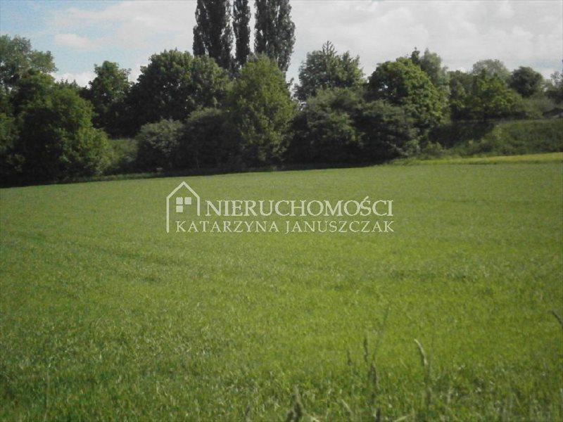 Działka budowlana na sprzedaż Mikołów, Bujaków  1250m2 Foto 1