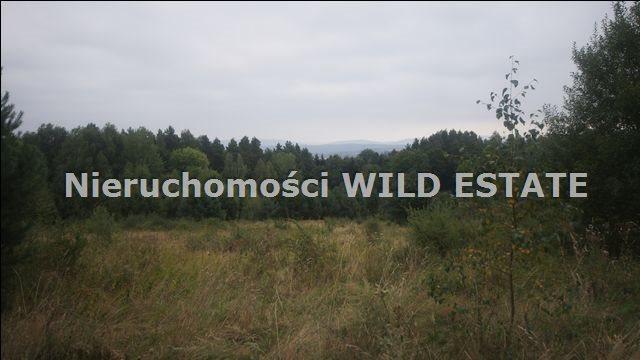 Działka rolna na sprzedaż Lesko, Huzele  88812m2 Foto 4