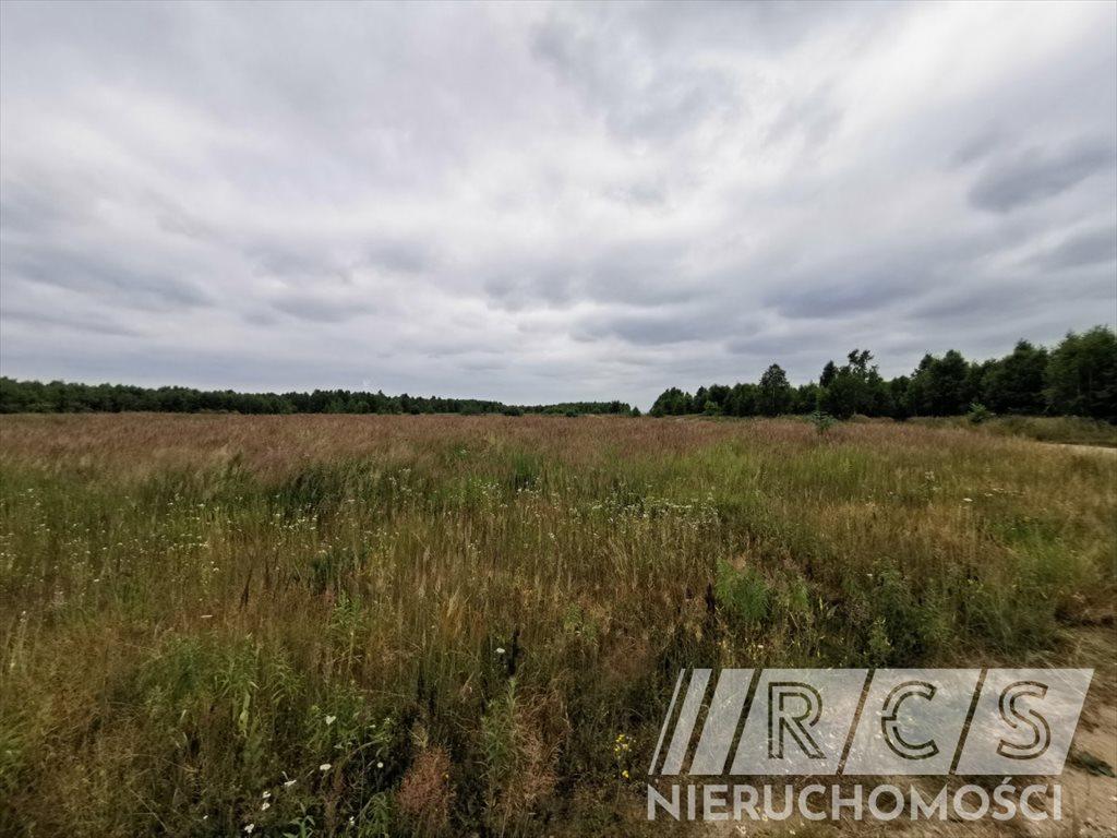 Działka rolna na sprzedaż Gniewomirowice, Kwiatowa  31218m2 Foto 3