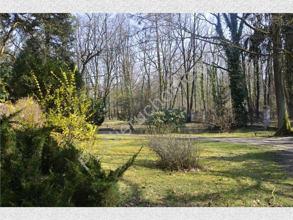 Dom na sprzedaż Podkowa Leśna  416m2 Foto 11