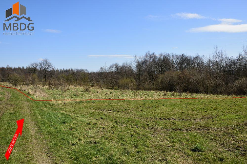 Działka siedliskowa na sprzedaż Brodła  14100m2 Foto 1