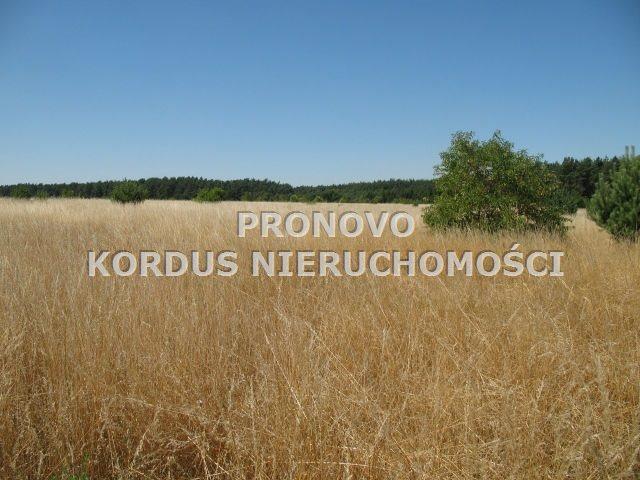 Działka rolna na sprzedaż Steklno  116500m2 Foto 1
