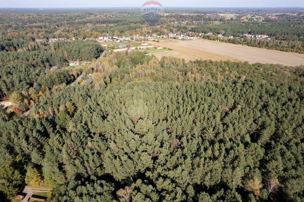 Działka leśna z prawem budowy na sprzedaż Czarnówka  15000m2 Foto 3