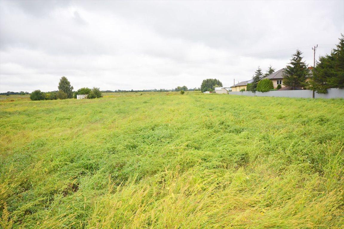 Działka rolna na sprzedaż Sokołów  22600m2 Foto 2