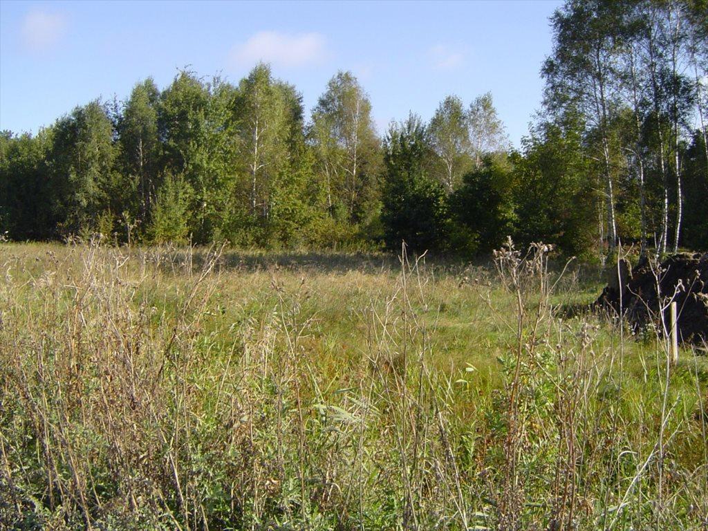 Działka budowlana na sprzedaż Otwock, Mlądz  7050m2 Foto 1