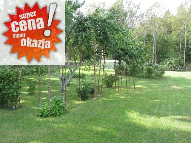 Dom na sprzedaż Krzęcin  60m2 Foto 1