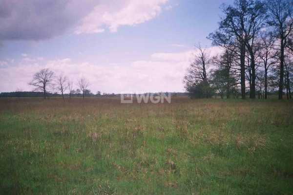 Działka rolna na sprzedaż Uraz, Uraz  66000m2 Foto 3