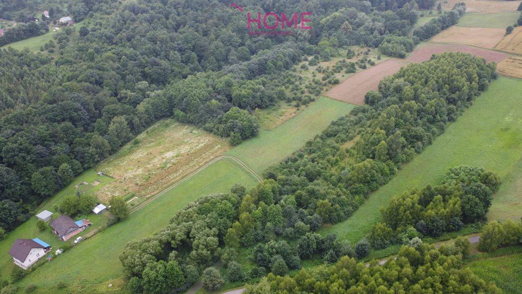 Działka leśna na sprzedaż Śliwnica  14500m2 Foto 4