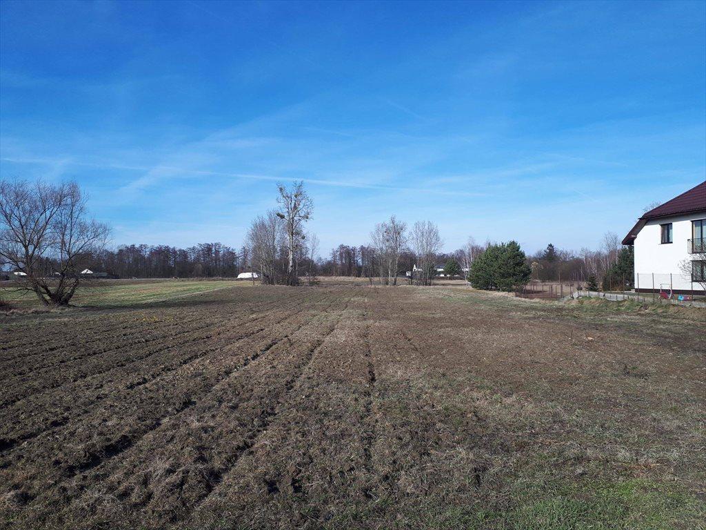 Działka rolna na sprzedaż Konstancin-Jeziorna, Obórki  10000m2 Foto 2