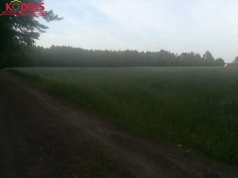 Działka rolna na sprzedaż Strzegocin  34368m2 Foto 1