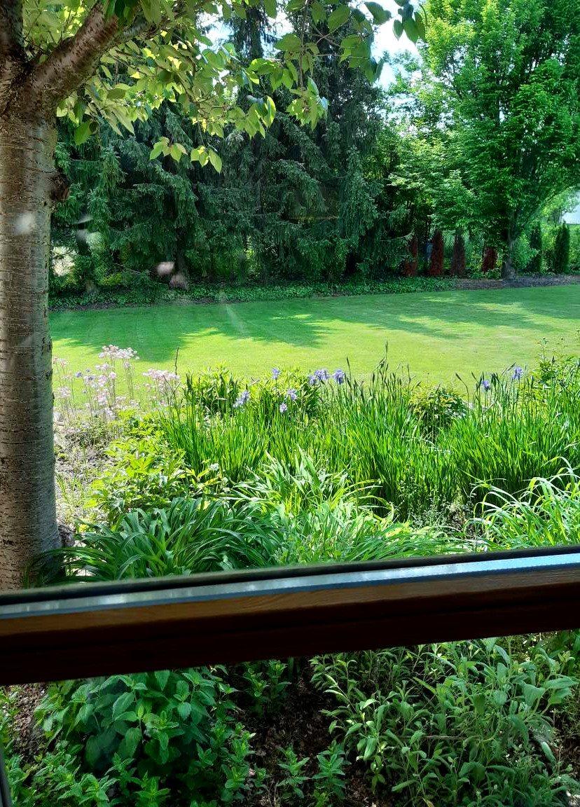 Dom na sprzedaż Konstancin-Jeziorna, Parcela  264m2 Foto 14