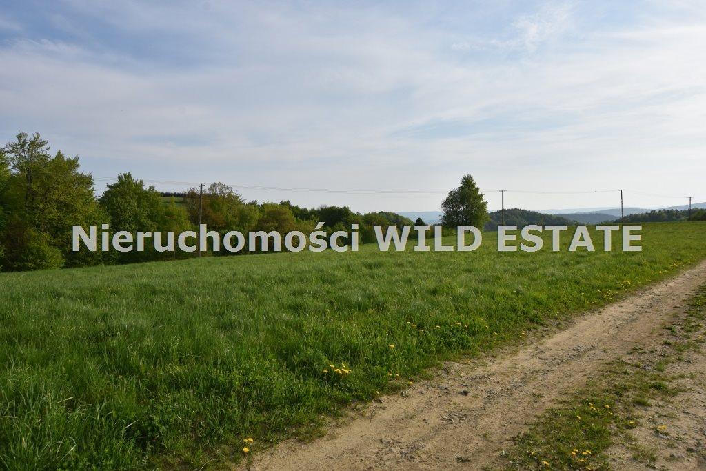 Działka budowlana na sprzedaż Zagórz, Brzozowiec  3418m2 Foto 5