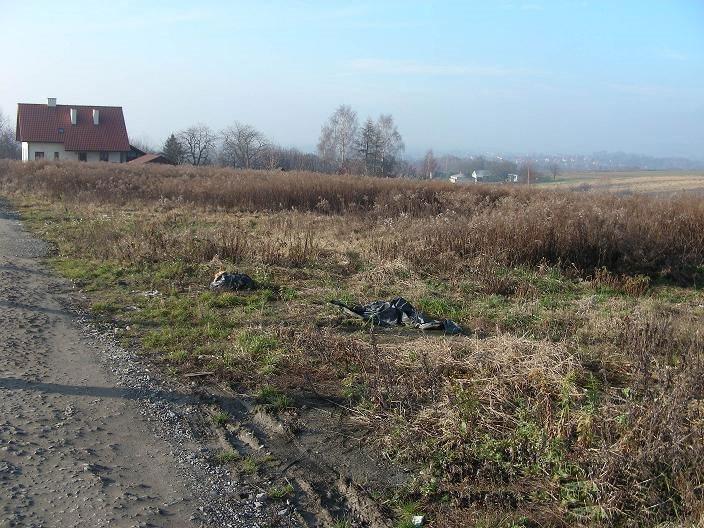 Działka budowlana na sprzedaż Tomaszowice  3800m2 Foto 3
