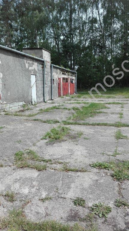 Działka budowlana na sprzedaż Lasek  4400m2 Foto 4