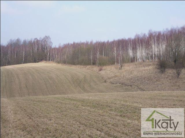 Działka rolna na sprzedaż Czarny Kierz, Czarny Kierz, Czarny Kierz  16500m2 Foto 7