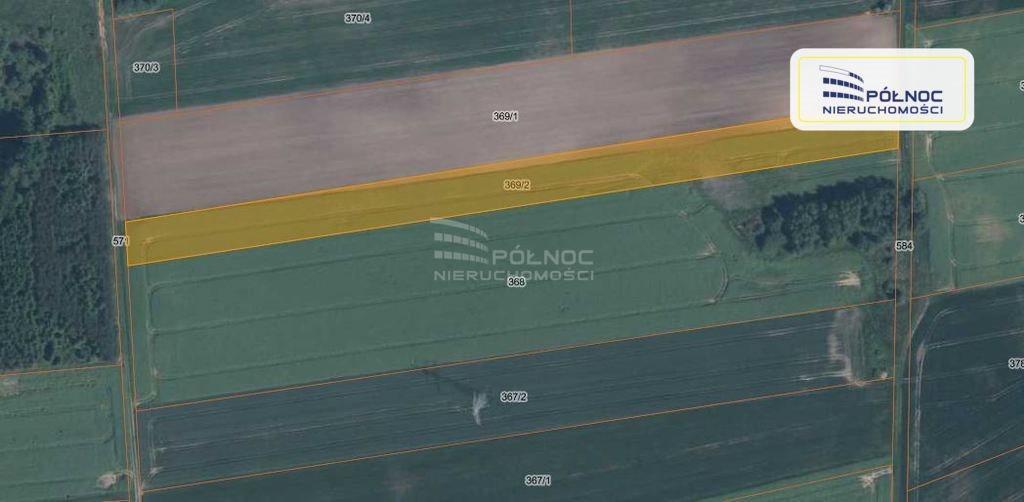 Działka rolna na sprzedaż Parzyce  10000m2 Foto 2