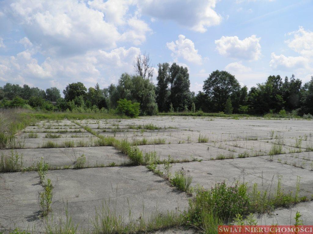 Działka przemysłowo-handlowa na sprzedaż Wrocław, Zakrzów, Zakrzów  8360m2 Foto 5
