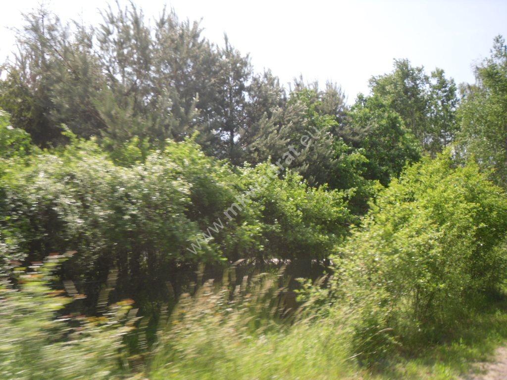 Działka siedliskowa na sprzedaż Sowia Wola  75115m2 Foto 7