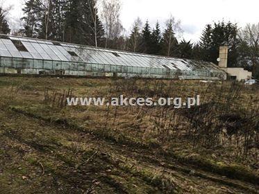 Działka leśna na sprzedaż Henryków-Urocze  27900m2 Foto 9