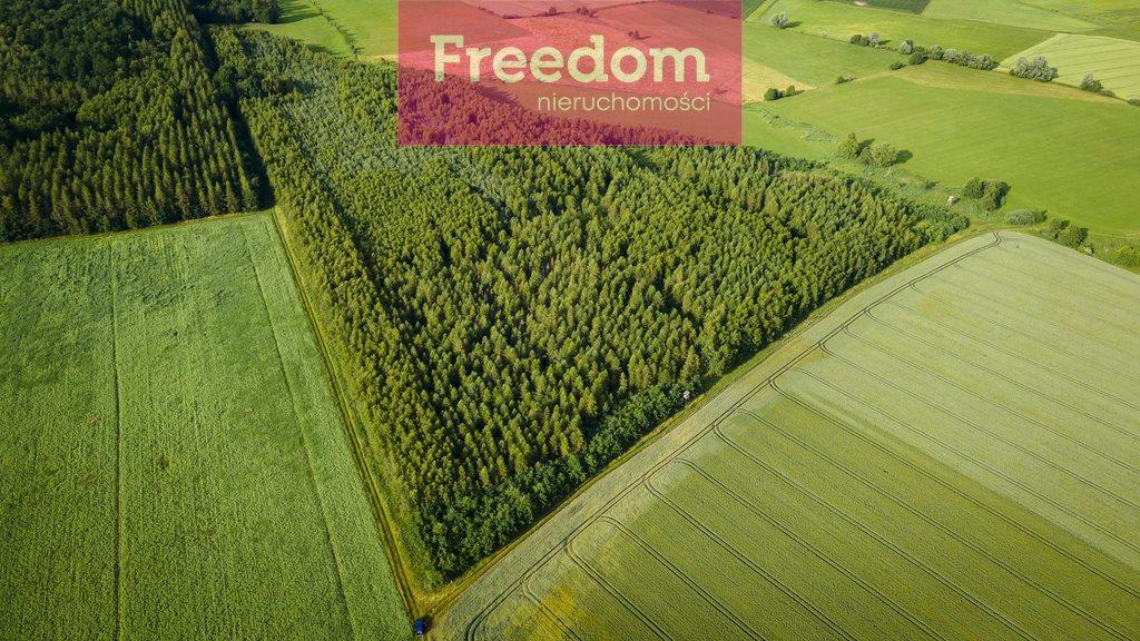 Działka leśna na sprzedaż Parys  93000m2 Foto 2
