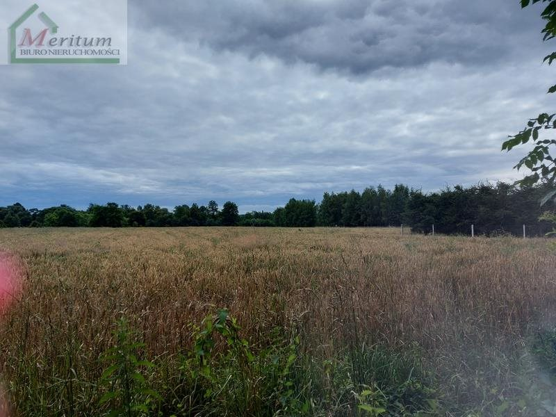 Działka rolna na sprzedaż Świerzowa Polska  4996m2 Foto 2