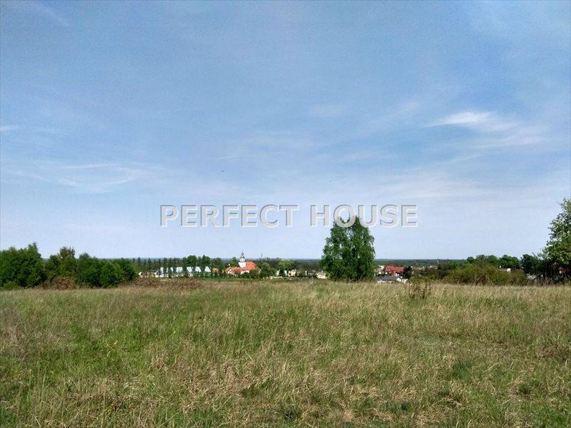 Działka budowlana na sprzedaż Poznań, Morasko  4942m2 Foto 5
