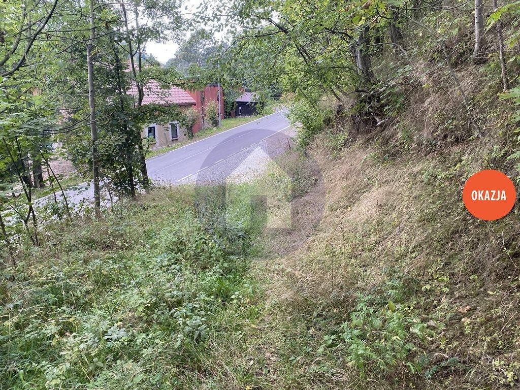 Działka budowlana na sprzedaż Srebrna Góra  5850m2 Foto 3
