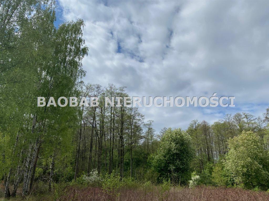 Działka inna na sprzedaż Budy Mszczonowskie, Mszczonowska  21236m2 Foto 9