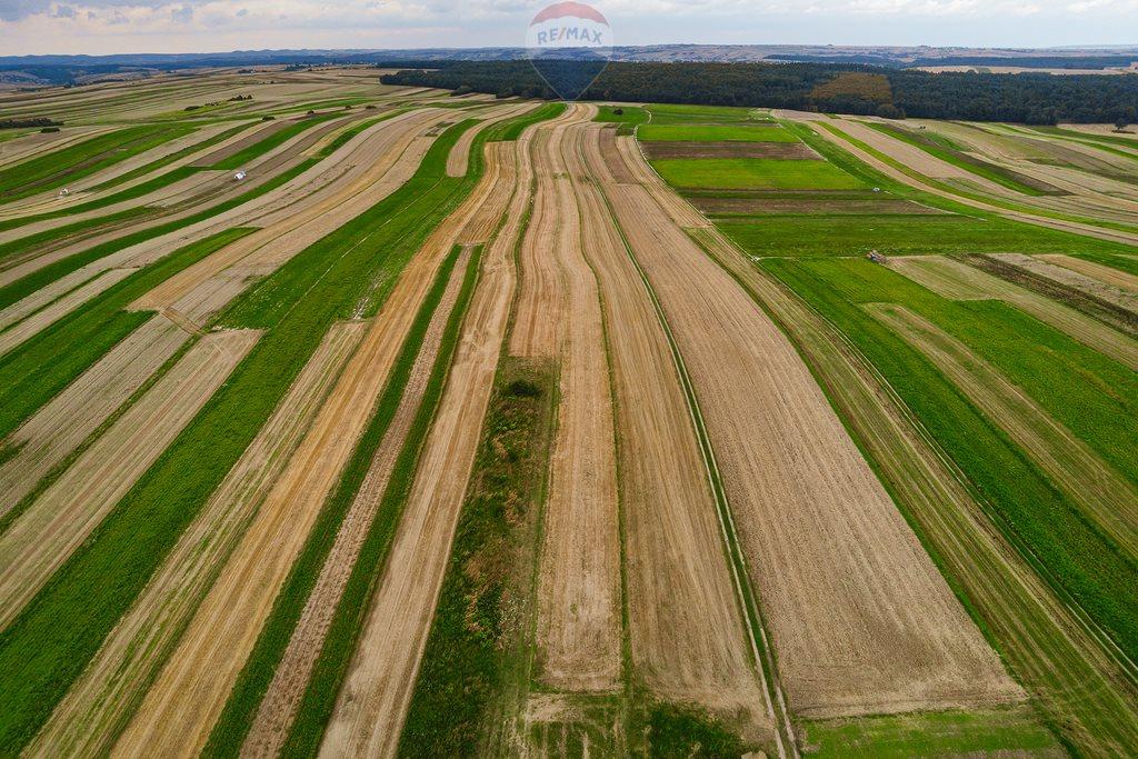 Działka rolna na sprzedaż Sułoszowa  14190m2 Foto 3