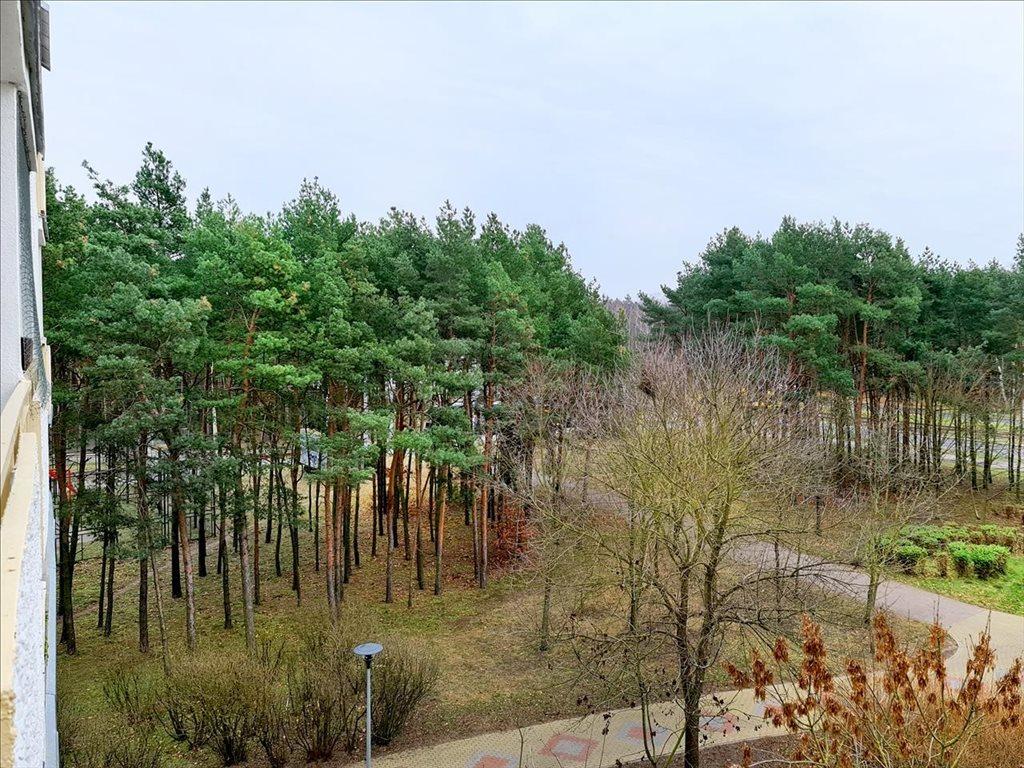 Mieszkanie dwupokojowe na sprzedaż Toruń, Toruń, Teligi  34m2 Foto 1